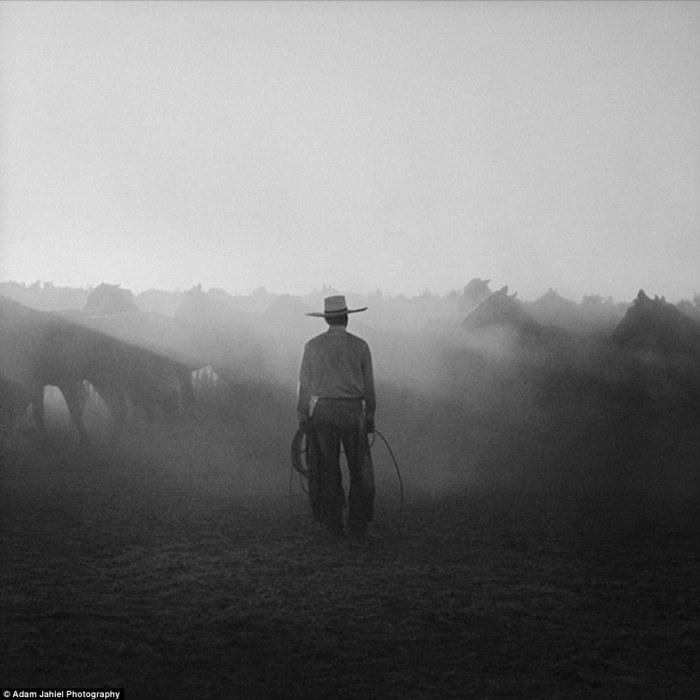 cowboy-ranch-adam-jahiel